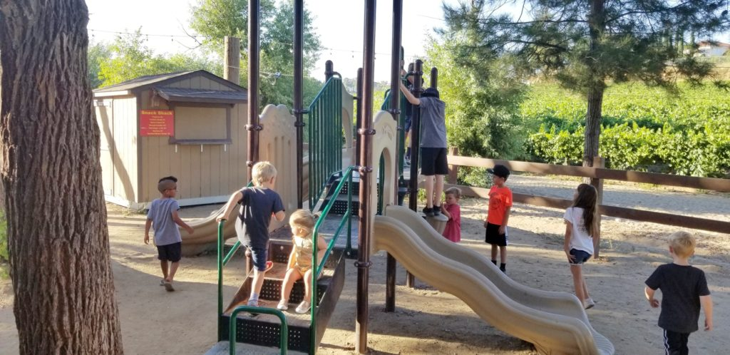 picture of kids playing at Longshadow Ranch Winery in Temecula, CA