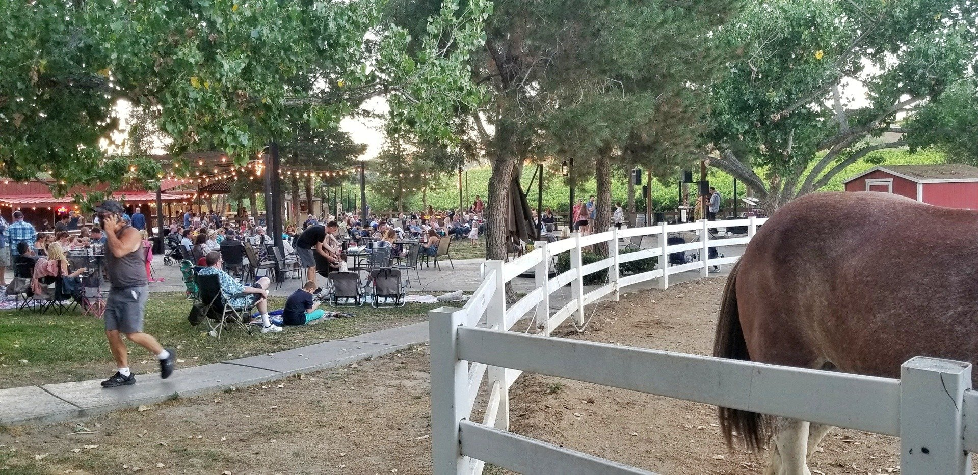 picture of people dancing to live music at Longshadow Ranch Winery in Temecula, CA